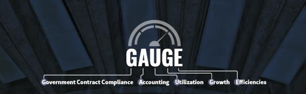 GAUGE Image
